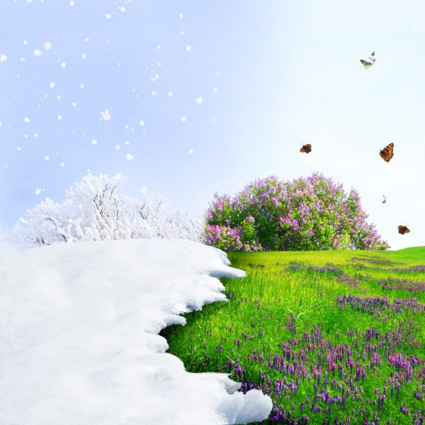 Two seasons side by side showing warmer temperatures with spring arrival