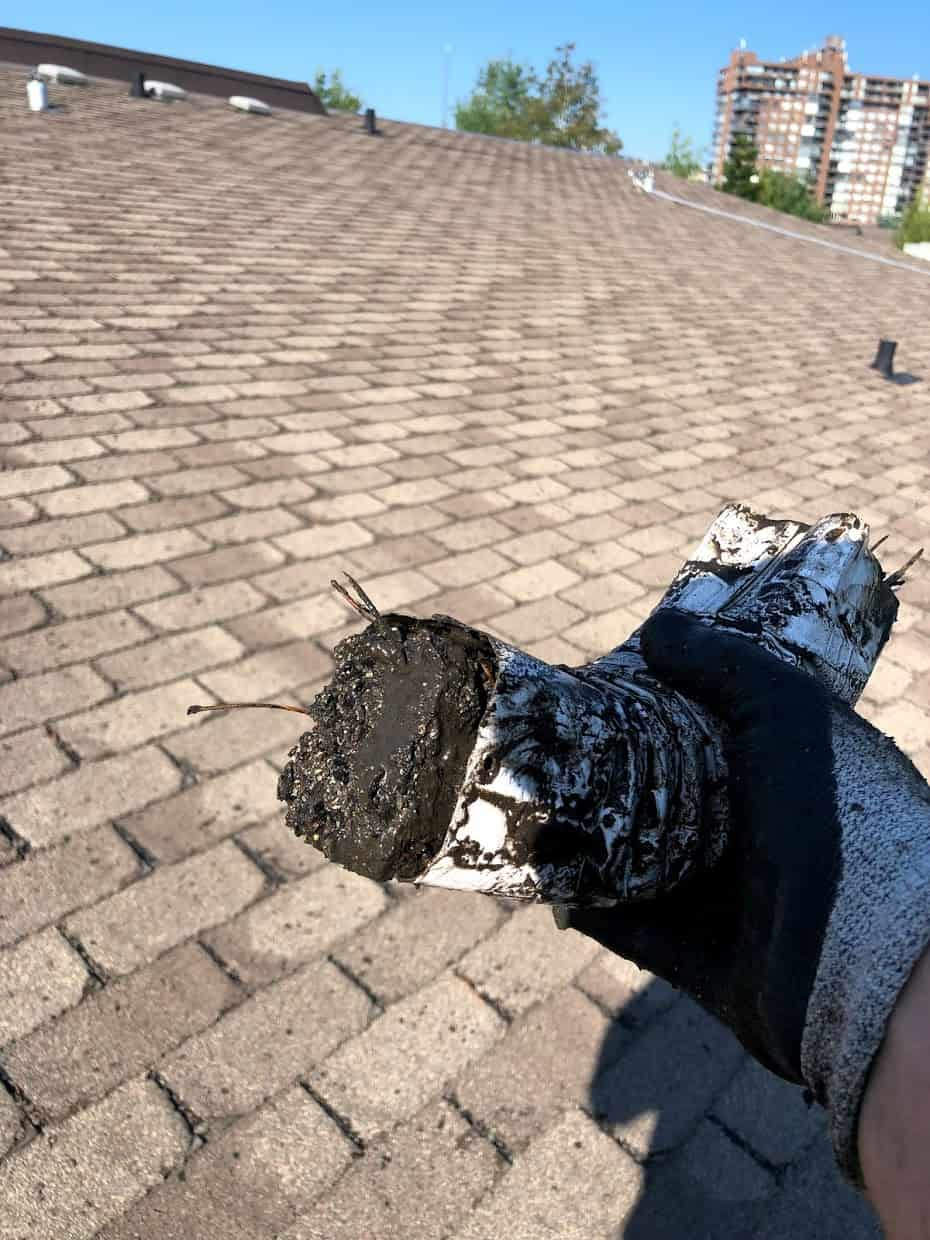 gutter filled with dirt